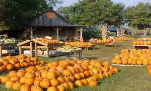 walden-farm