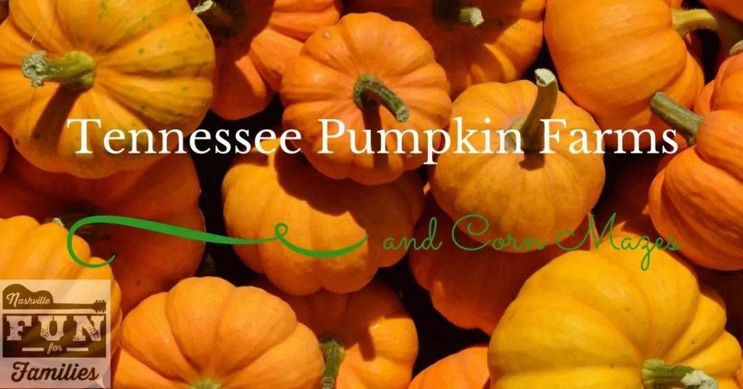 Nashville Fun for Families - Pumpkin Farms