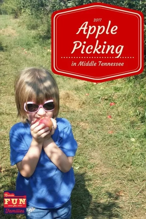 2017 Apple Picking in Middle Tennessee - pinterest