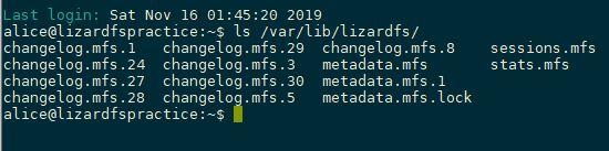 [Tutorial] LizardFS - Drive Level File Redundancy On Single Computer 7