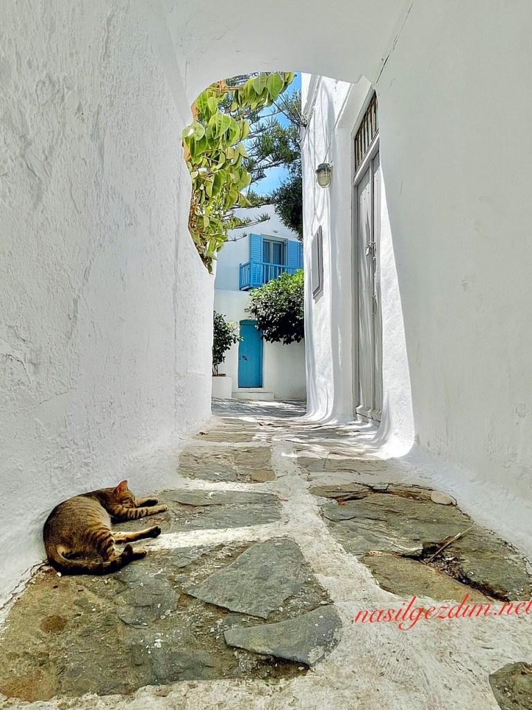mykonos sokakları, mykonos gezilecek yerler, mikonos gezi rehberi, mykonos gezi rehberi