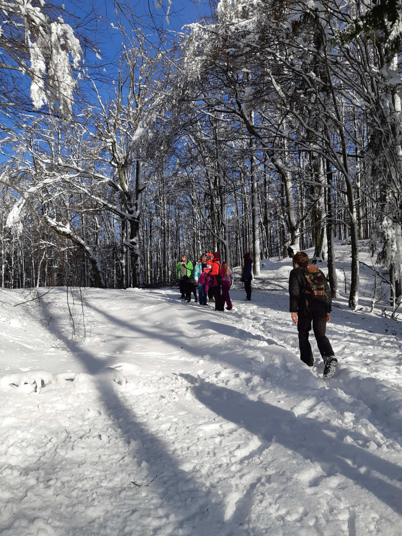 small group hike