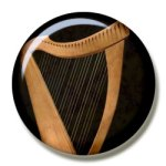 Harp lessons in Clear Lake at Nassau Bay Music Lessons