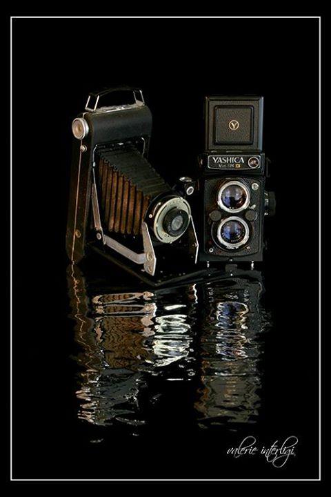 national-camera-day