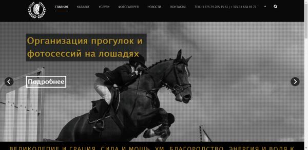 Horses of Belarus