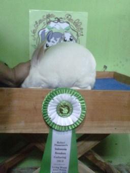 Kesambi-20130610-00411
