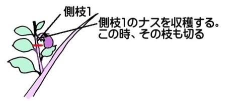 nasu-tekisin002