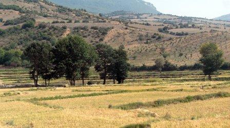 Rolniczy rejon u stóp gór Alburz w północnym Iranie