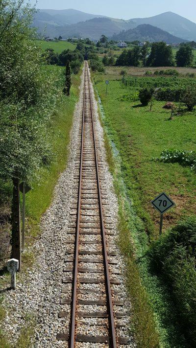 Vía de tren a ambos lados con mucha vegetación
