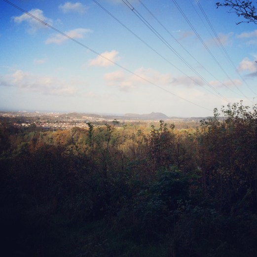 View from Bonaly