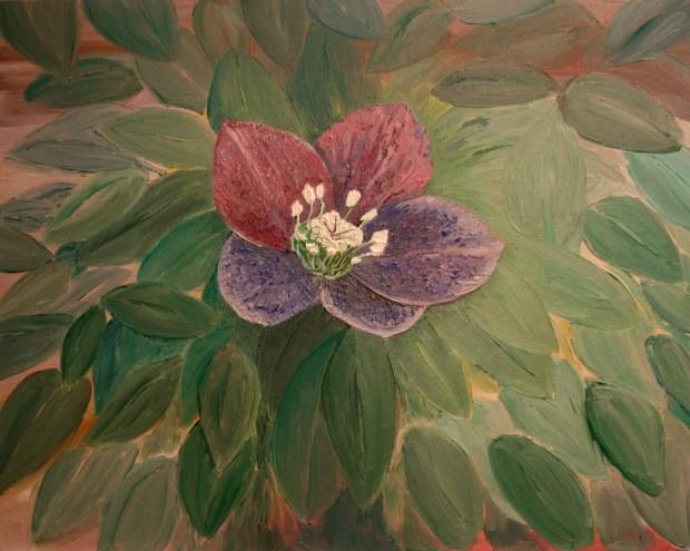 Lenten Flower oil painting by Natalie Buske Thomas