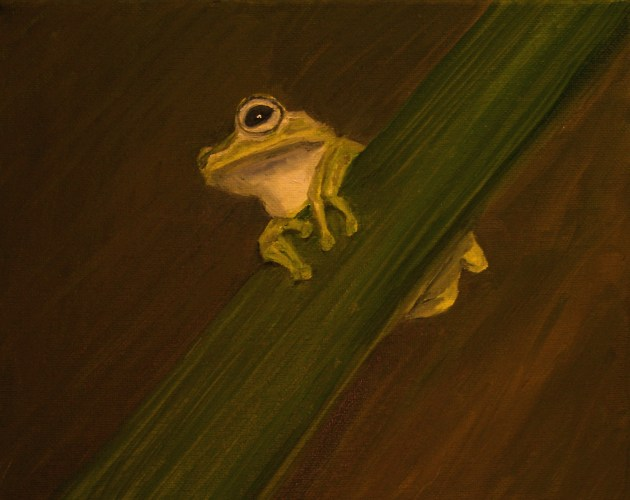 Tree Frog oil painting