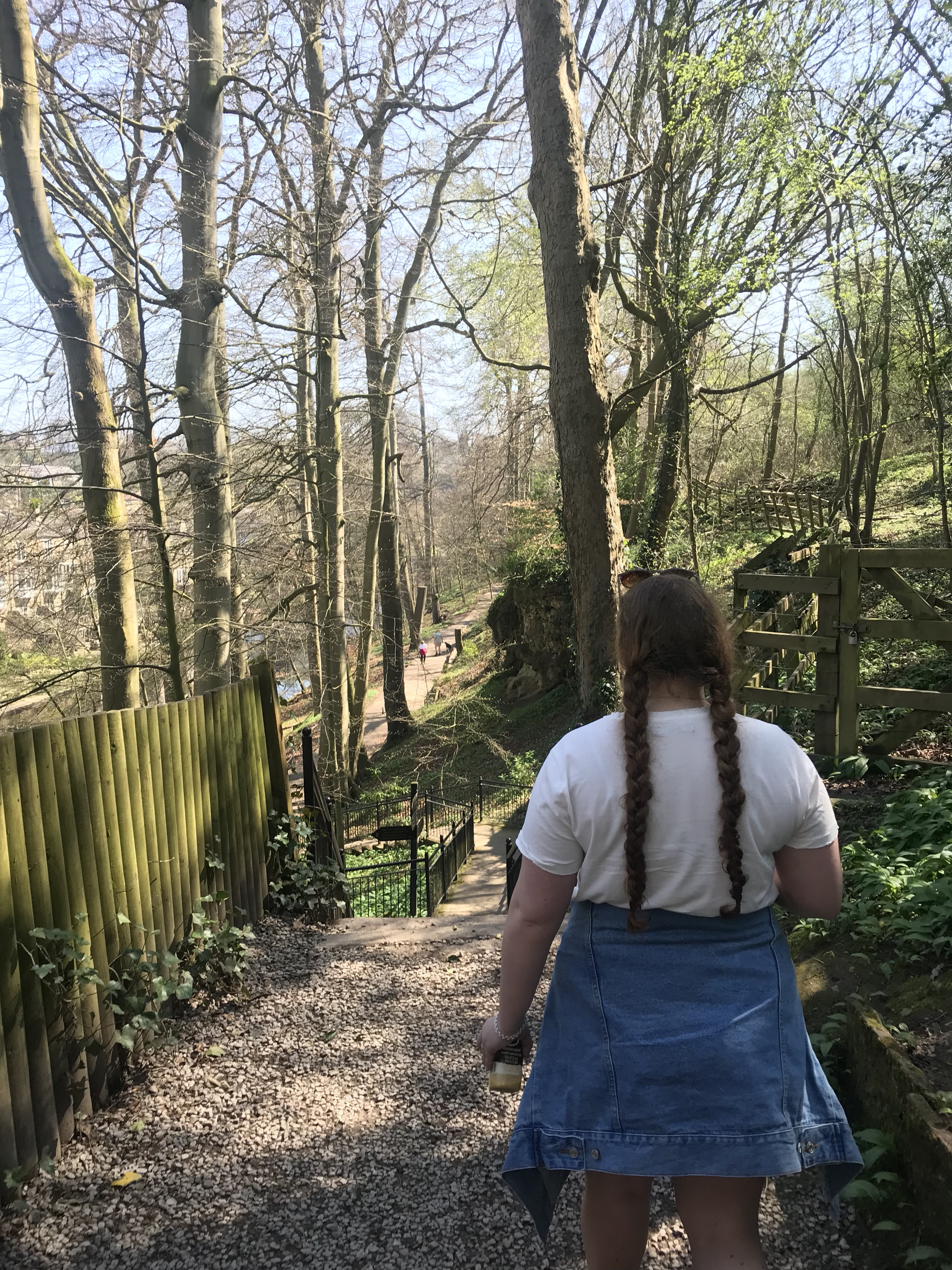 forest walk to Mother Shipton's Cave, Knaresborough