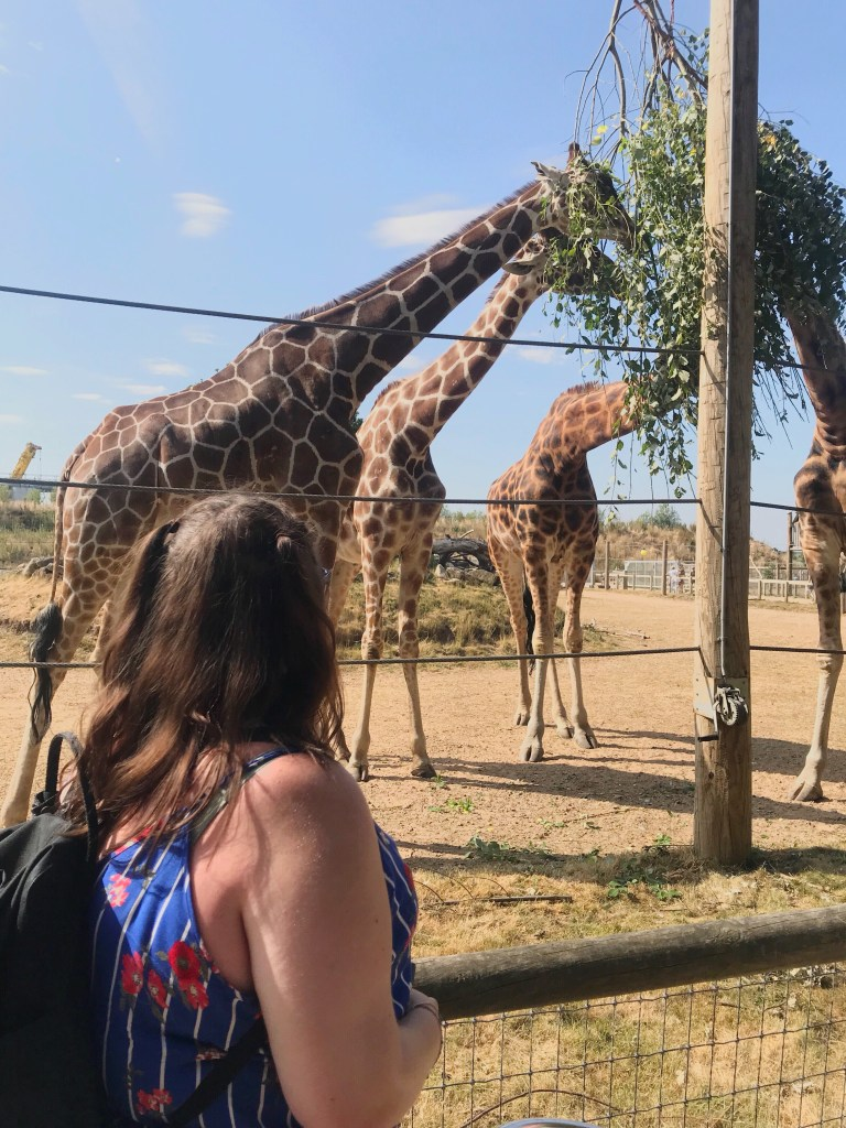 Day Out: Yorkshire Wildlife Park