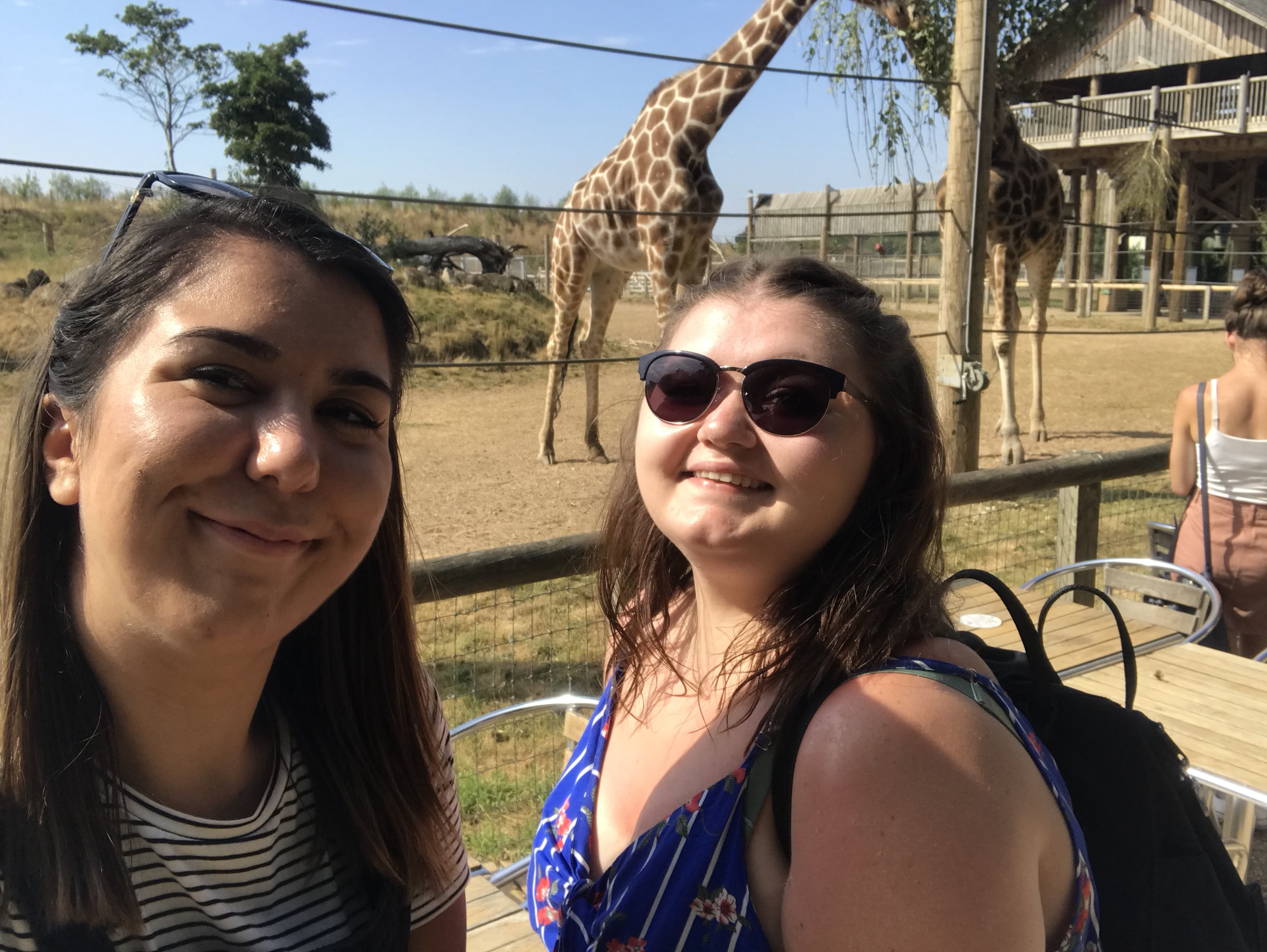 Selfie with the giraffes