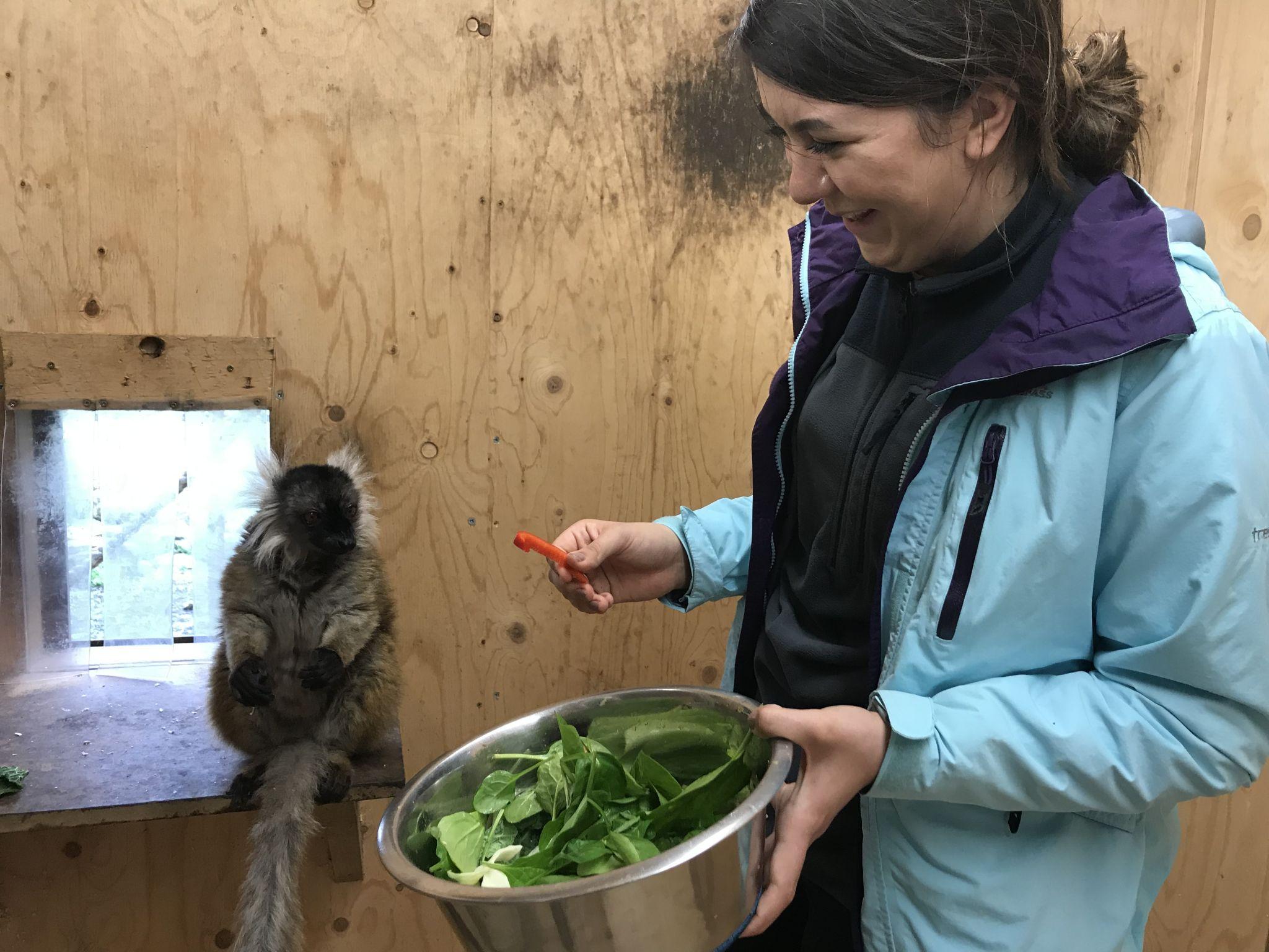 me laughing at the lemur at Askham Bryan Wildlife Park
