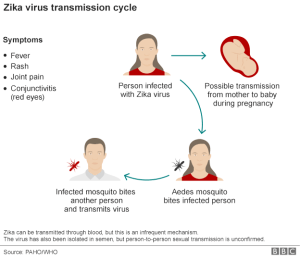 Zika_Virus_Transmission