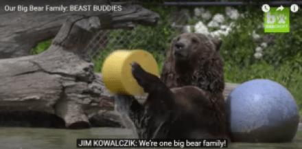 the-bear-family