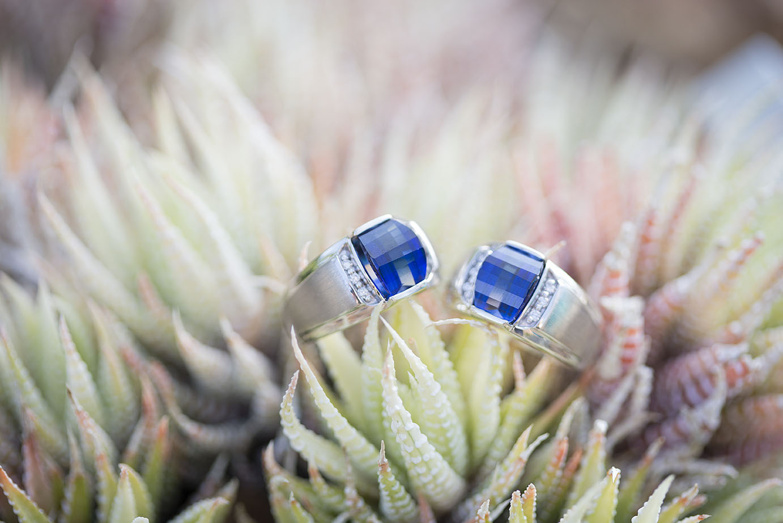 Wedding rings at Matthaei Botanical Gardens in Ann Arbor