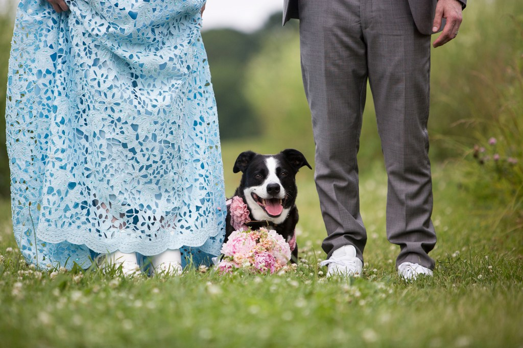 Wedding photo with pet