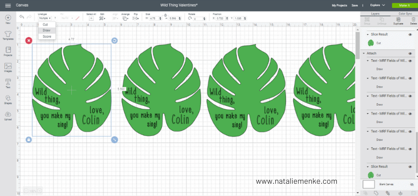 Cricut Design Space screen shot of palm leaves and text