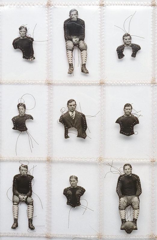 specimens_det