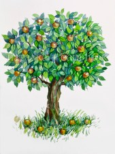 Apple Tree. Watercolor painting