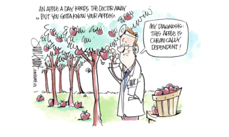 apples-to-size
