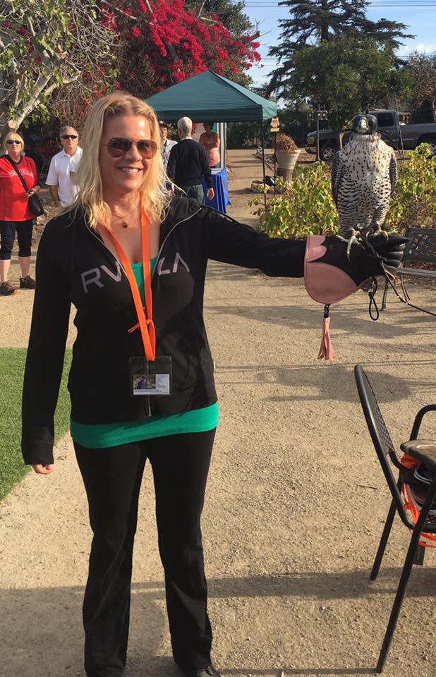 Birds of Prey: Why I Tried Falconry and Will Do It Again