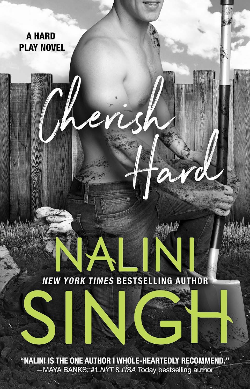 BOOK REVIEW & EXCERPT: Cherish Hard by Nalini Singh : Natasha is a Book  Junkie | Romance Book Blog