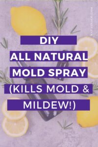 diy all natural mold and mildew spray
