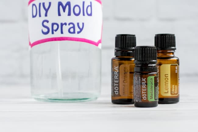 DIY Mold Spray with Essential Oils - Easy and Non-Toxic