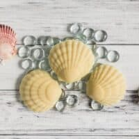 Lotion Bar Without Beeswax Recipe
