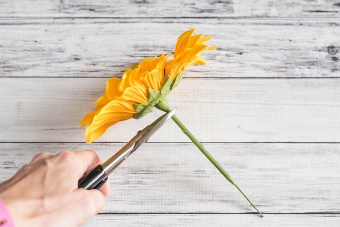 cut-floral-stem