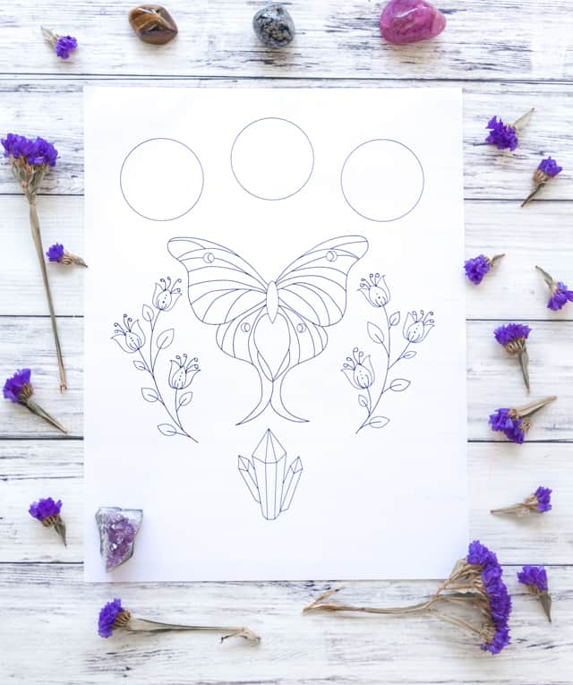 luna moth printable coloring page