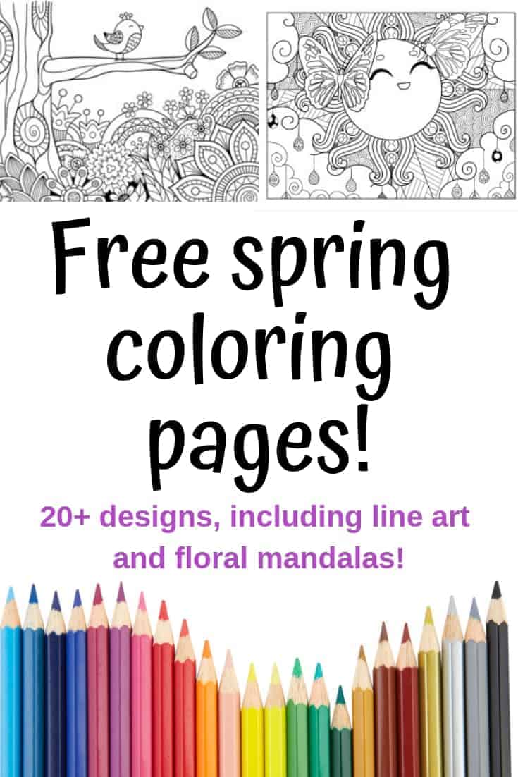 photo regarding Printable Spring Coloring Pages named Spring Coloring Web pages - Free of charge Printable Spring Grownup Coloring
