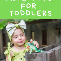 The Best Frog Toys for Toddlers (+ Awesome Gifts for Toddlers who Love Frogs!)