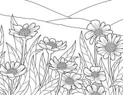 blooming-flowers-coloring-page