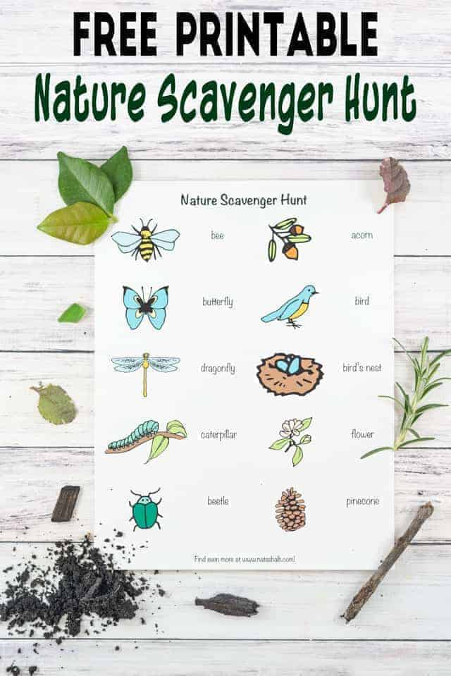 image about Printable Scavenger Hunt called Mother nature Scavenger Hunt for Infants and Preschoolers - The