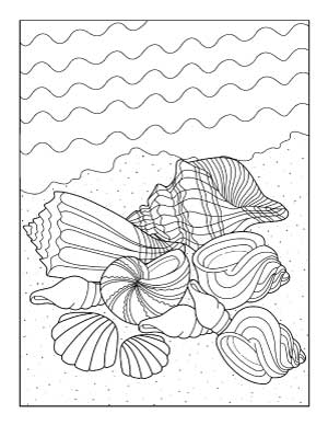 shells-and-ocean-coloring-page