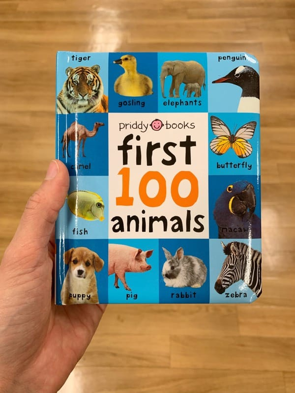 Animal Library Wild Animals and Jungle Animals Includes Baby Animals Touch and Feel