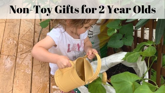 non-toy gift ideas for two year olds