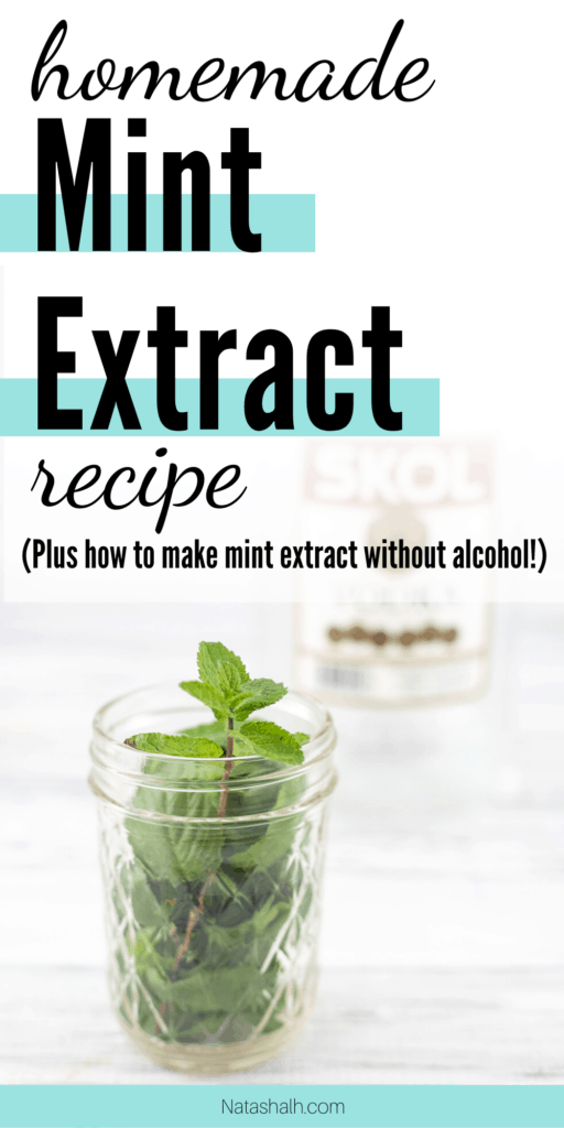homemade mint extract