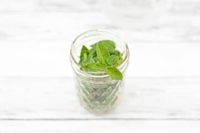 jar of fresh mint