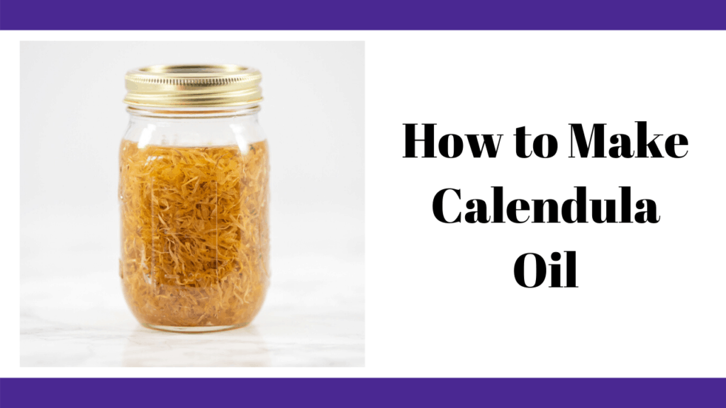 "a jar of calendula oil with caption ""how to make calendula oil"""
