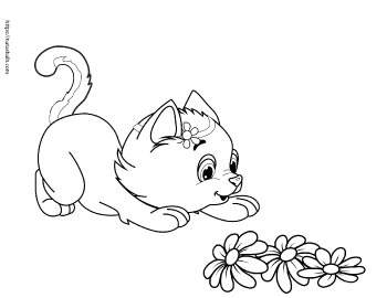 Super Cute Cat Coloring Pages (easy no-prep kids' activity ...