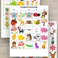 Free Printable Bingo