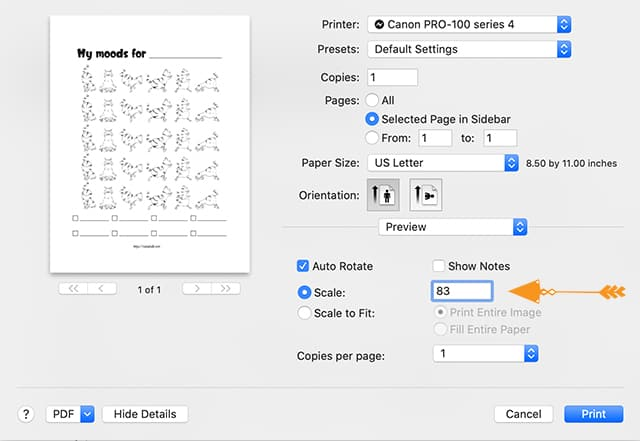 print dialogue box showing how to scale a letter sized printable to fit a Happy Planner