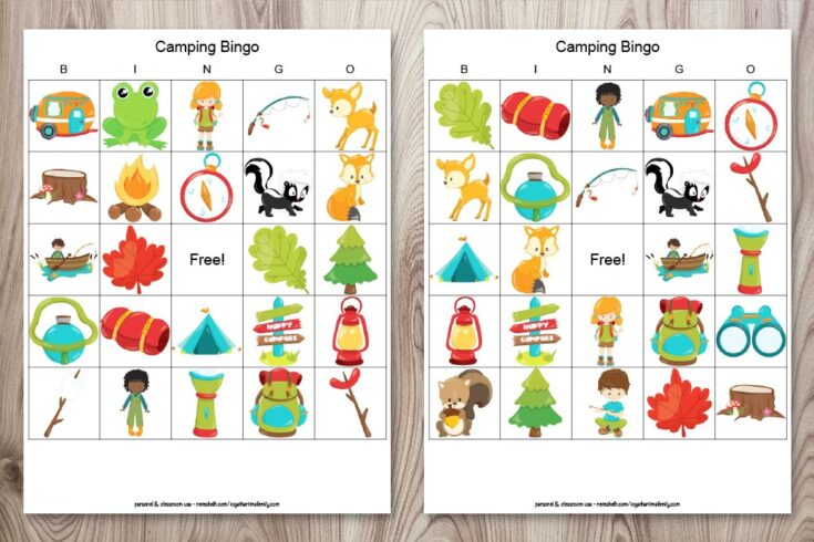 Free Printable Camping Bingo (perfect for rainy days at the campground)