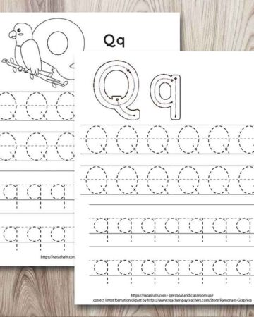 Two letter q tracing worksheets. Both have dotted uppercase and lowercase letter q's to trace. The front page has correct letter formation graphics for uppercase and lowercase q. The page behind has a large bubble Q and a quetzal bird to color.